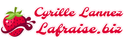 Cyrille Lannez - Websmaster Freelance Rhône-Alpes